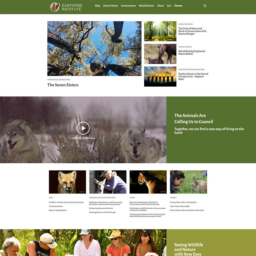 Screenshot of Earthfire Institute's website