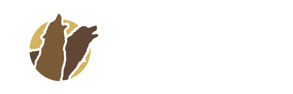 Earthfire Institute Logo